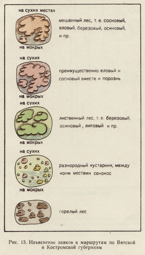 russian_forest_symbols_13
